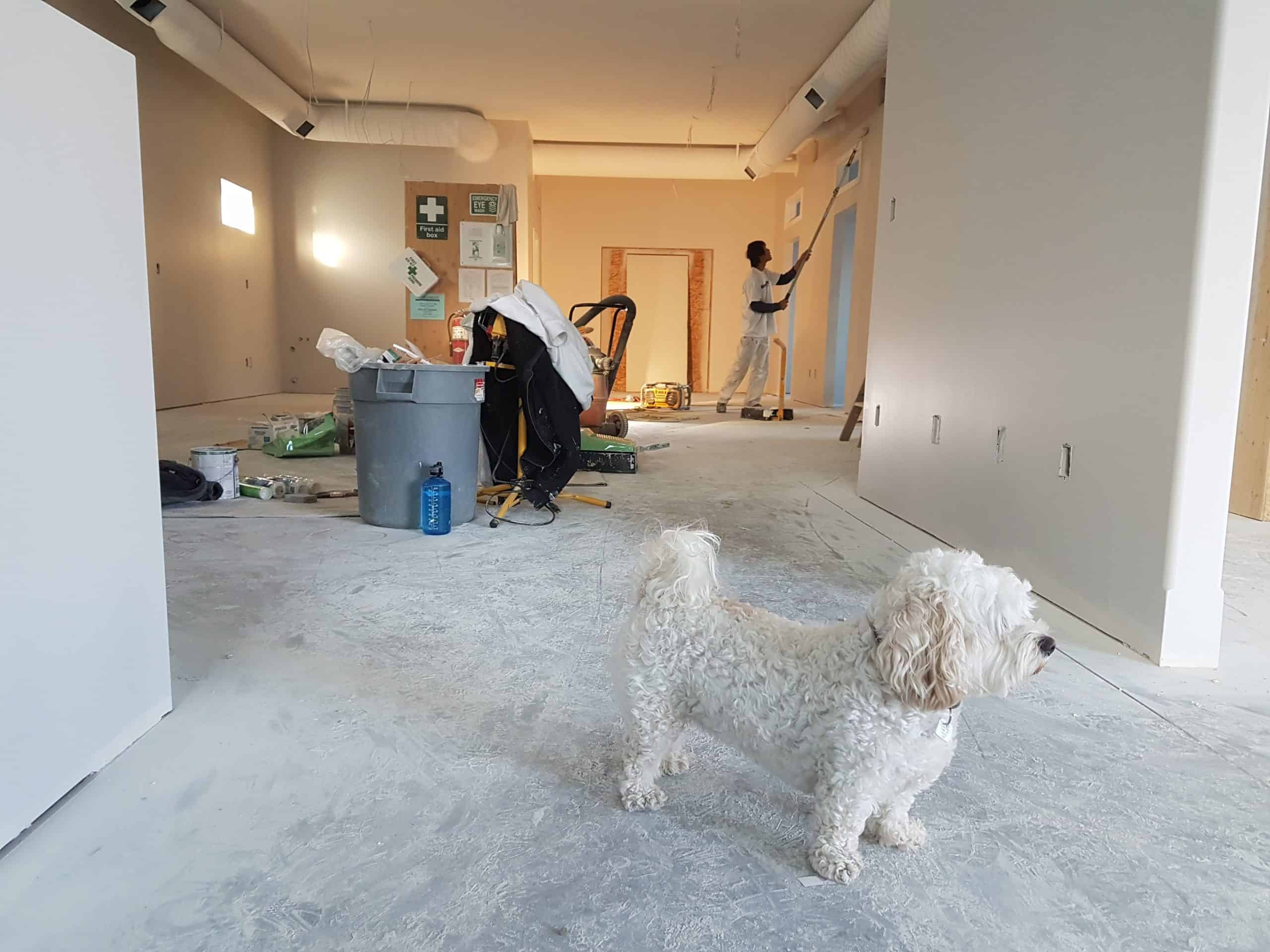 Some Tips For Home Remodeling