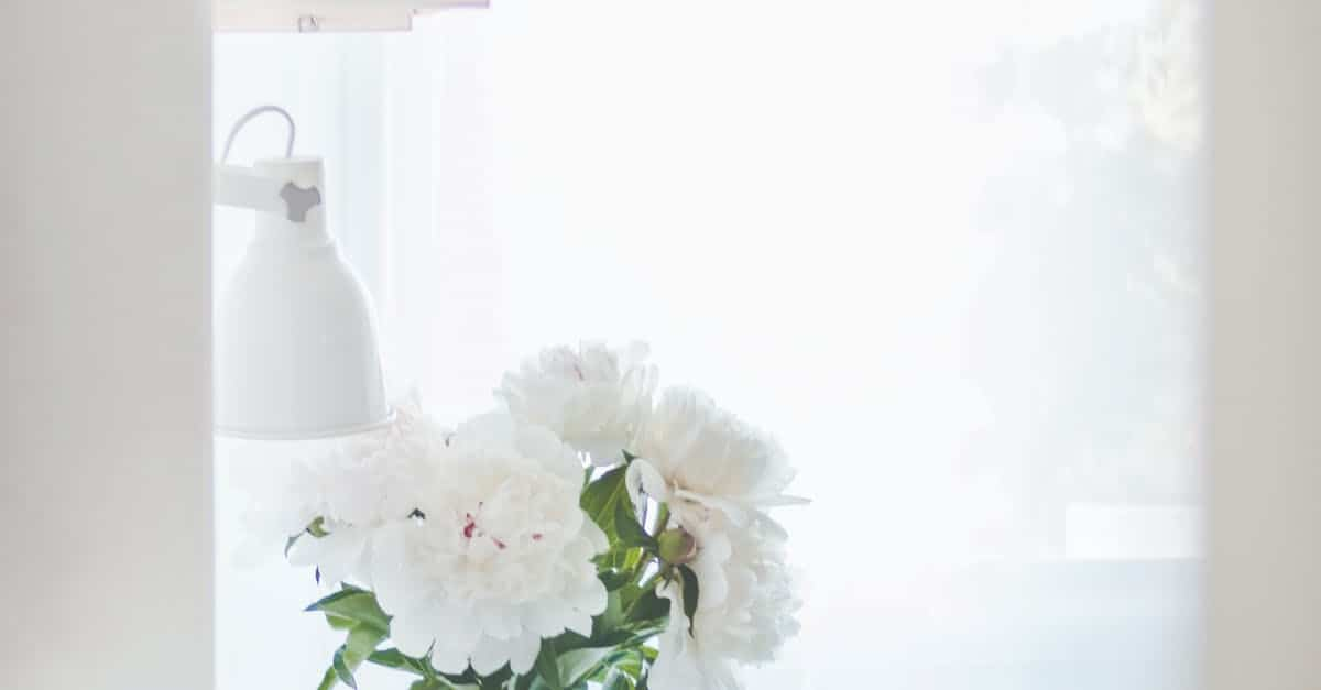 A vase filled with flowers sitting on a table